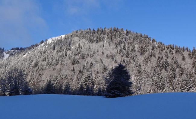 Paysage hivernal (Jura suisse)