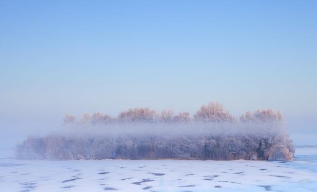 ìle d'arbres sur un lac gelé