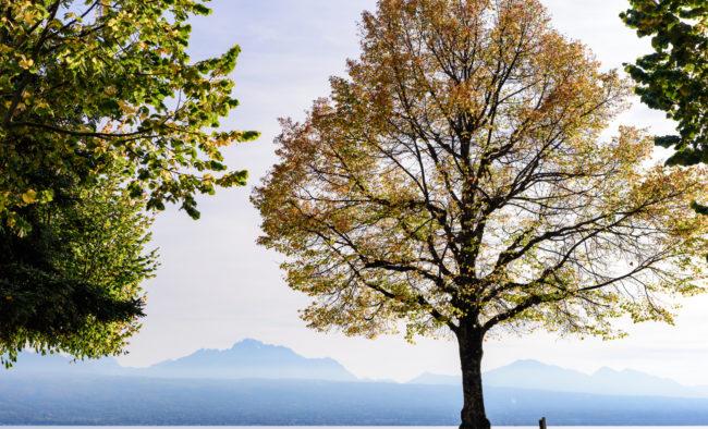 Beautiful view of lake geneva near Haldimand Tower