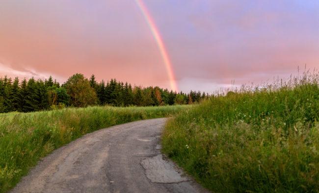 Rainbow over the summer field